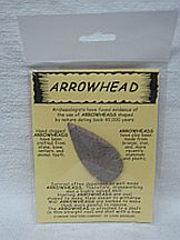 Missing image <174049llargearrow_w.jpg> Group: 40490 - LARGE ARROWHEAD ON CARD <BR>Average size 2-3 inches<br>