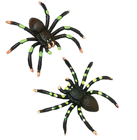Missing image <247_PaintedSpider.jpg> Group: 247 - PAINTED SPIDER